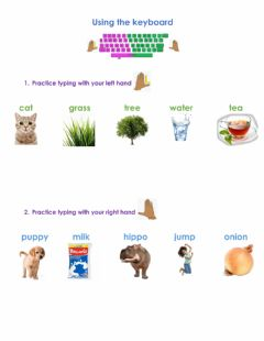 Interactive worksheet Typing activity