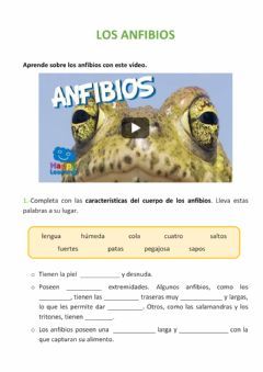 Interactive worksheet Los anfibios