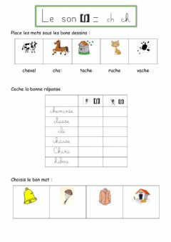 Interactive worksheet Le son ch