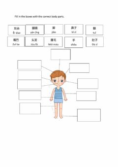Interactive worksheet 身体部位