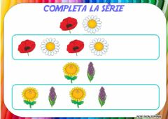 Interactive worksheet Series flores