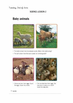 Interactive worksheet Animals-Science lesson 2