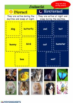 Interactive worksheet Diurnal and Nocturnal Animals