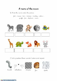 Interactive worksheet A taste of the moon - Animals' activity