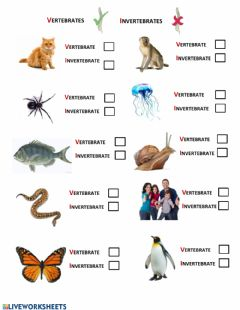 Interactive worksheet Vetebrates vs Invertebrates