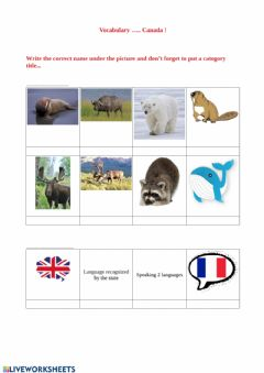 Interactive worksheet Vocabulary test - Canada part 1