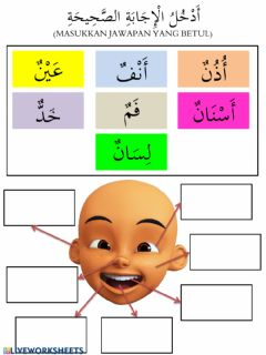 Interactive worksheet أعضاء الجسم