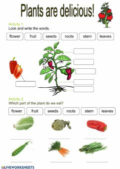 Interactive worksheet Plants are delicious!