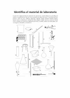 Interactive worksheet Material de laboratorio
