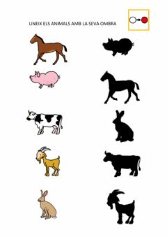 Interactive worksheet Animals i les seves ombres