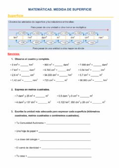 Interactive worksheet Medida de superficie