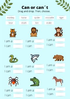 Interactive worksheet Can or can-t