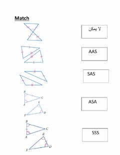 Interactive worksheet مثلثات