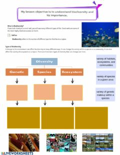 Interactive worksheet Biodiversity types