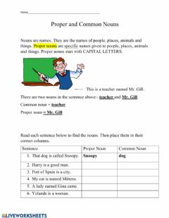 Interactive worksheet Proper and Common Nouns Practice