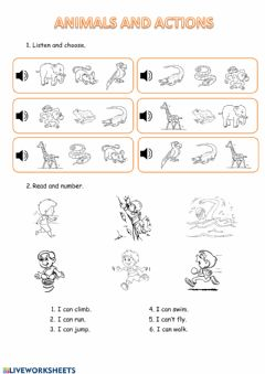 Interactive worksheet Animals and actions