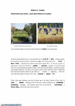 Interactive worksheet Nature in London