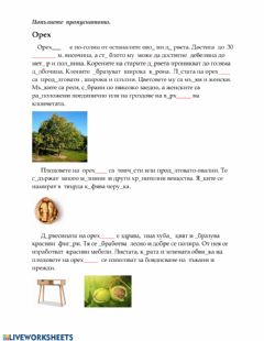 Interactive worksheet Орех