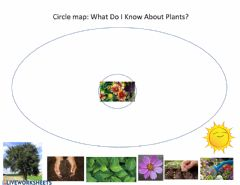Ficha interactiva Circle map plants