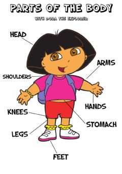 Interactive worksheet Parts of the Body - Dora the explorer