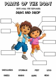 Interactive worksheet Parts of the body - Drag and drop