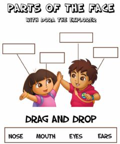 Interactive worksheet Parts of the face - Drag and Drop