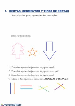 Interactive worksheet Recta y tipos