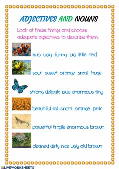 Interactive worksheet Adjectives and Nouns