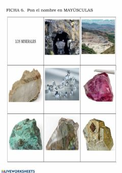 Interactive worksheet Diferentes Minerales