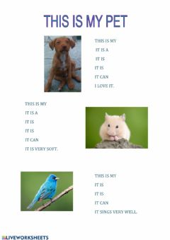 Interactive worksheet This is my pet