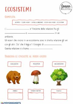 Interactive worksheet Ecosistemi