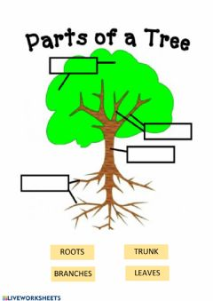 Interactive worksheet Parts of a tree
