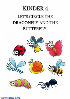 Ficha interactiva Let's circle the dragonfly and the butterfly