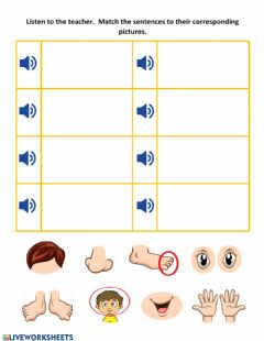 Interactive worksheet These are - This is - Body Parts