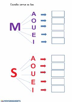 Interactive worksheet Lectura m y s