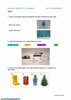 Interactive worksheet Natural Science 5º Unit 6 3