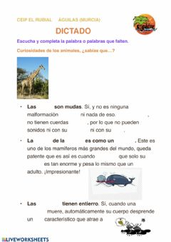 Interactive worksheet Dictado de curiosidades animales