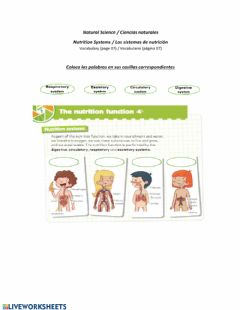 Interactive worksheet Nutrition Systems