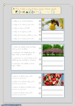 Interactive worksheet primavera I