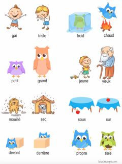 Interactive worksheet Vocabulario principal en frances