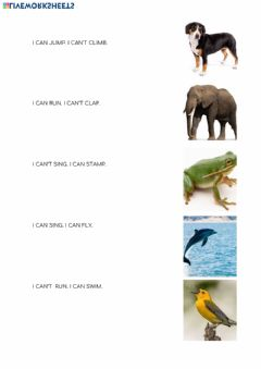 Interactive worksheet Animals and actions review