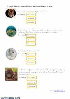 Interactive worksheet Alimentación de animales