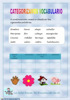 Ficha interactiva Categorización vocabulario