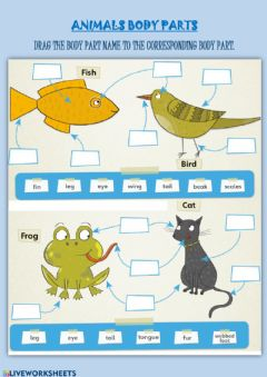 Interactive worksheet Animals Body Parts