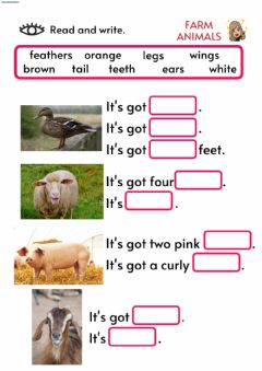 Interactive worksheet Describing farm animals