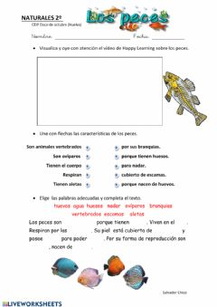 Interactive worksheet Los peces
