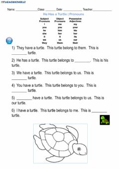 Interactive worksheet He has a Turtle - Pronouns