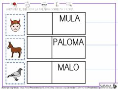 Interactive worksheet Palabras con p-l-m