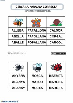 Interactive worksheet Cerca la paraula correcta (animals2)