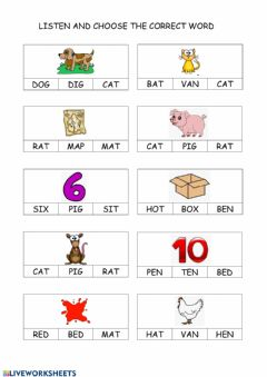 Interactive worksheet CVC WORDS 3º EI